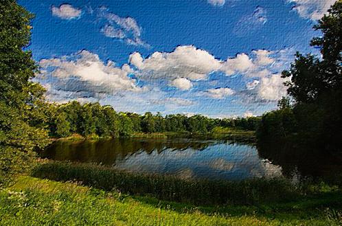 Хотели бы Вы научится рисовать красивые картины? Теперь стало все намного проще, благодаря программе фотошоп. В этом уроке мы научимся рисовать картину с фотографии.