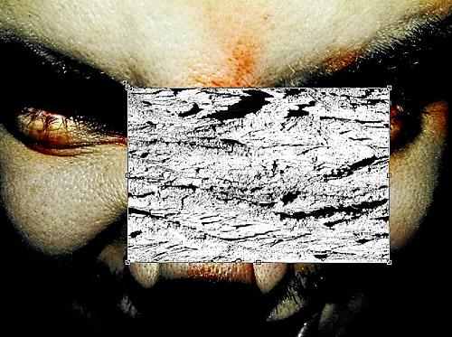 Текстура на лице